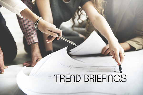 angebot-trend-briefings
